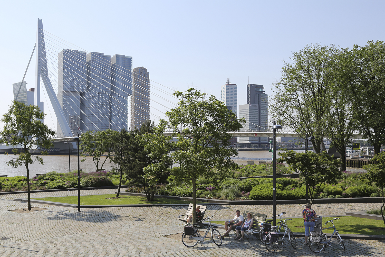 Kop van Zuid, Rotterdam. Vanuit het 'Ze Hielden Koers Park'